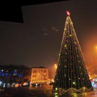 Ночная Елочка зимой возле театра Гоголя 28.12.2010, Полтава