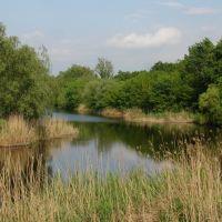 Говтва/ River Govtva at Poltava, in the village Reshetilovka., Решетиловка