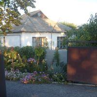 Domek jako v květinářství, Решетиловка