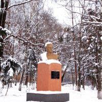 Памятник закатованому фашистами у 1942р. Івану Сухині. Memorial for tortured soldier Ivan Suhina., Семеновка