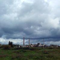 Завод, Семеновка