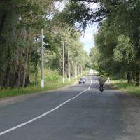 Road from Chernukhy, Чернухи