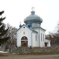 Церковь Андрея Первозванного, Чутово
