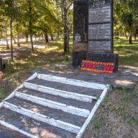 Памятник освободителям Чутово., Чутово