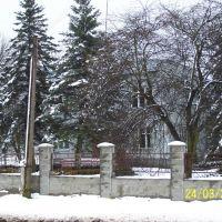 Лісництво, Владимирец