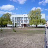 Районна рада, Владимирец