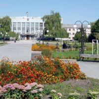 Площа, Владимирец