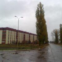 В`їзд в Володимирець, Владимирец