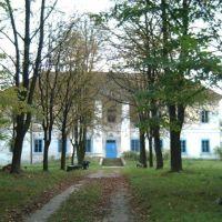 Старий маєток, Владимирец