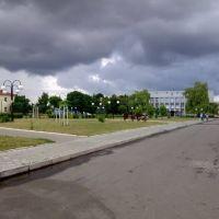 Перед грозою, Владимирец