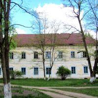 Вид дворца с заду, Владимирец