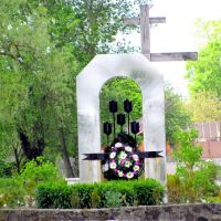 Памятный знак погибшим в Афганестане, Владимирец