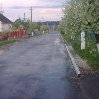 Вулиця Вишнева, Владимирец