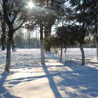 Парк взимку. Park winter., Демидовка