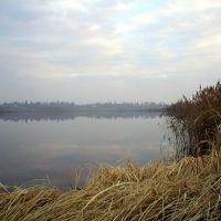 Осінній туман на ставку, Autumn Fog on the pond, Демидовка