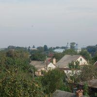 Погляд на церкву над дахами.Looking at the church over the roofs., Демидовка