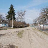 Вулиця Польова. Street Field., Демидовка