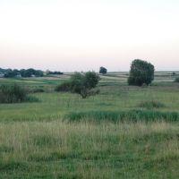 Пасовище. Pasture., Демидовка
