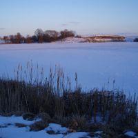 Вид на став в бік села Ільпибоки. Type in a village in the direction Ilpyboky., Демидовка