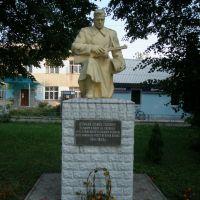 Памятник на братській могилі. Monument to the mass grave., Демидовка