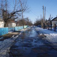 Вулиця Шевченка. Street Shevchenko, Демидовка