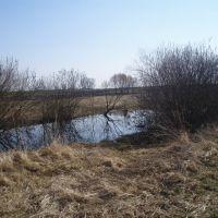 Копанка. Pond dug., Демидовка