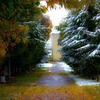Перший сніг. First snow., Демидовка