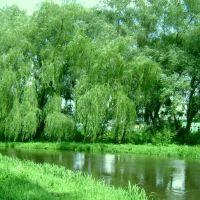 Дубно, річка Іква, Дубно