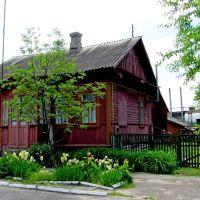 Волынские домики..., Дубровица