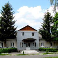 Музыкальная школа в пгт. Дубровица., Дубровица