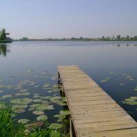 Вид на Старомильське вдсх., Здолбунов