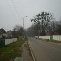 Біля заводу, Клевань