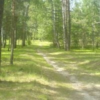 лесная дорога, Клесов