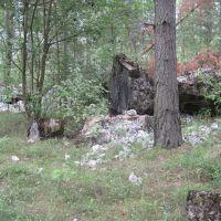Bastion Polesie Сомине-Гребля №1, Клесов
