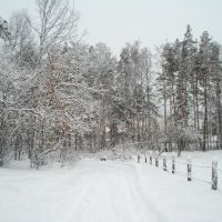 Хутор зимой 2012., Клесов