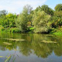 Малые реки Украины р. Корчик., Корец