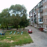 У дворі будинку по вулиці Скляній у Костополі (біля склозаводу), Костополь