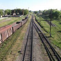 From Railway Bridge, Костополь