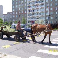 Современное средство передвежение, Кузнецовск