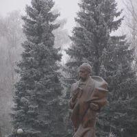 памятник Т.Г.Шевченку, Млинов