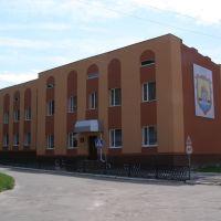 Музична школа, Млинов