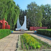 Мамериальный комплекс,погибшим в годы Второй Мировой ., Млинов