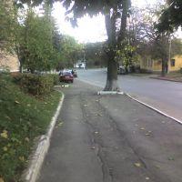 Дорога 3, Острог