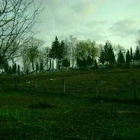 Кладовище, Острог, Острог