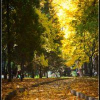 Autumn walking..., Ровно