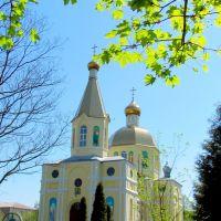Свято-Покровский храм., Сарны