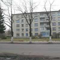 Lenina street 71, Белополье