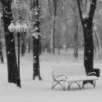 Первый снег, Бурынь