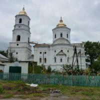 Михайловская церковь, Воронеж