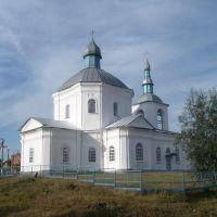 Спасская церковь, Воронеж